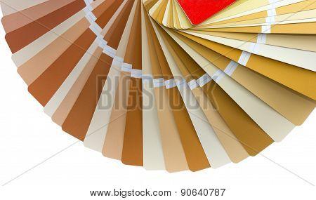 Color Palette Guide 4