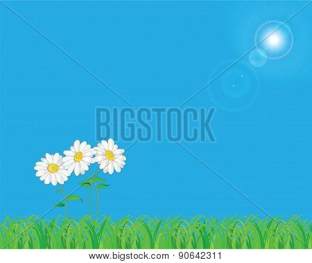 Summer natural background with empty space.