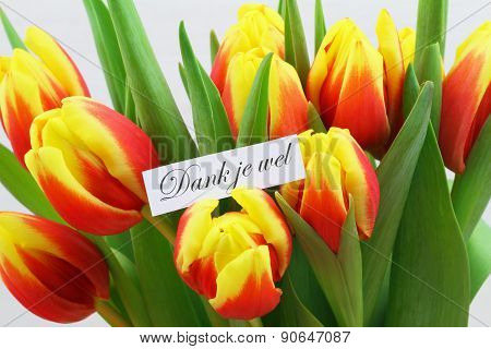 Dank je wel (which means thank you in Dutch) with colorful tulips