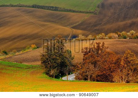 Indian Summer In Moravia