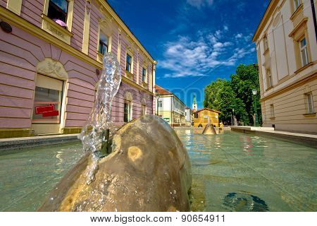 Town Of Bjelovar Fountain And Square View
