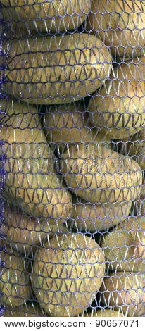 Abstract Background. Potatoes In Packing.