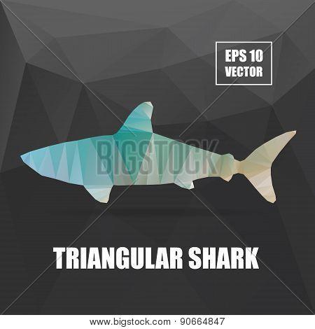 Poly design. Shark triangular illustration. Shark vector illustration. Polygonal animal series. Shar