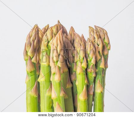 Asparagus Vegetable