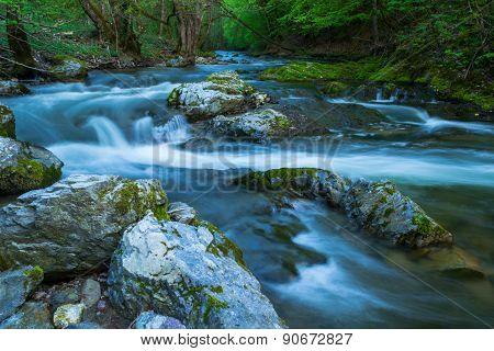 Wild river Bijela