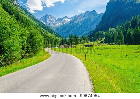 Alpine landscape, road and meadows, Alps, Austria
