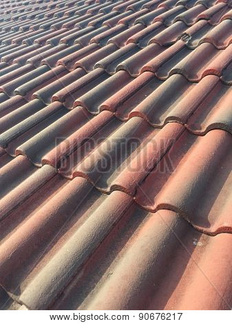Old Roof Top with Red Tiles