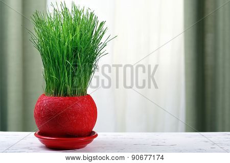 Green grass in pot on fabric background