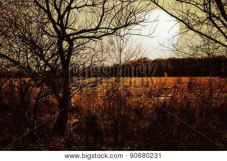 Minor late autumn mood-lit hidden sun