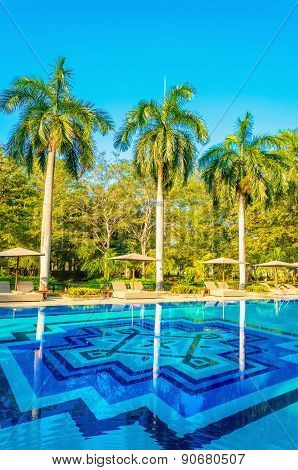 Sunbeds and high palm trees at the swimming pool