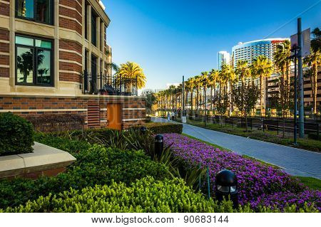 Gardens And Buildings Along The Mlk Promenade In San Diego, California.
