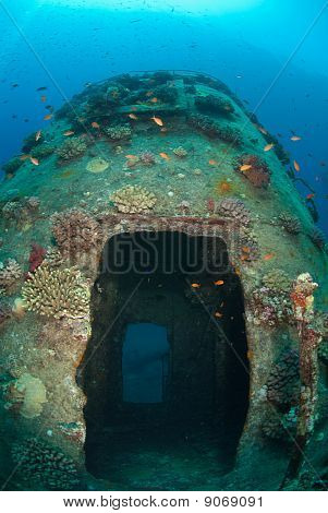 Red Sea Shipwreck Gianiss D