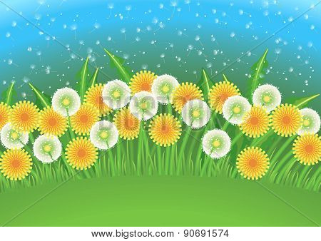 Cartoon background with dandelion flowers and dandelion seeds flying in the air