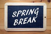 foto of spring break  - The phrase Spring Break in white text on a slate blackboard placed on a wood background - JPG