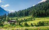 pic of grass area  - Beautiful alpine landscape with green grass hill in Zillertal alpine valley against blue sky - JPG