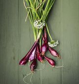 stock photo of onion  - Red Onions just picked from the garden on a wooden background - JPG