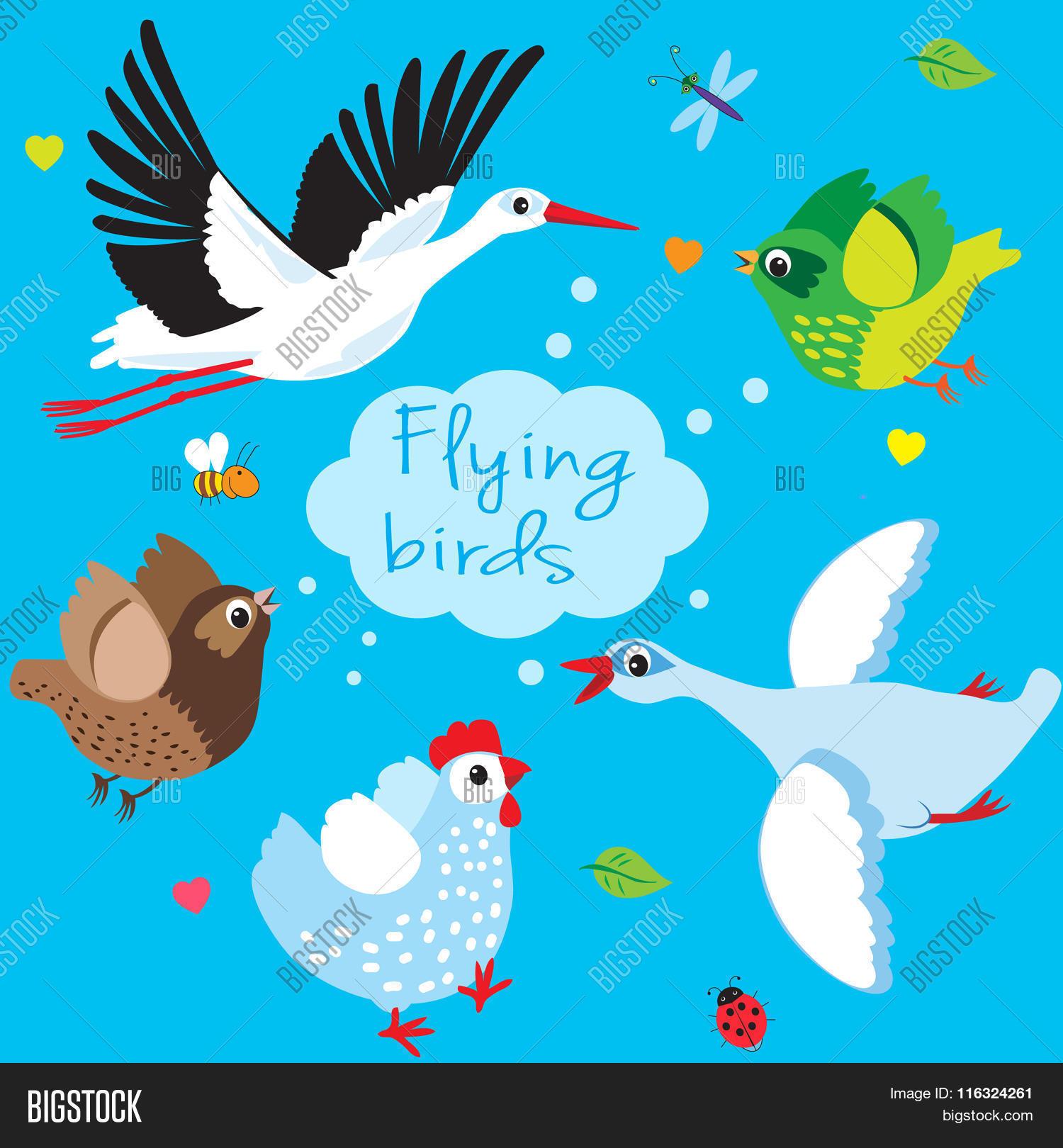 flying birds cartoon vector vector u0026 photo bigstock