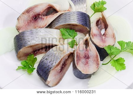 Sliced Pickled Atlantic Herring On A White Dish Closeup