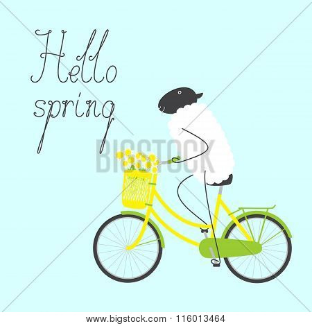 Hello Spring Greeting Card With Sheep