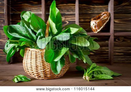 Fresh Spinach In A Basket On The Table