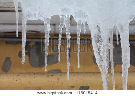 Hanging icicles. aged wall background. soft focus