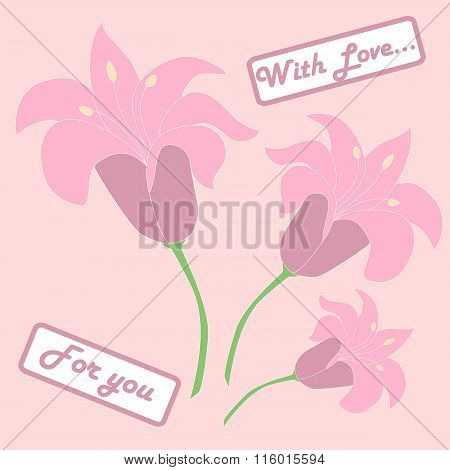 Pink lilium with card for you.