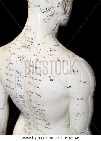 Acupuncture Concept
