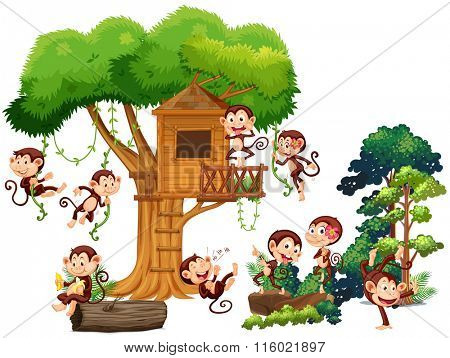 Monkeys playing and climbing up the treehouse