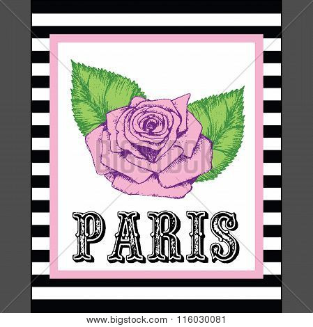 Paris Print Slogan. For T-shirt Or Other Uses,in Vector.
