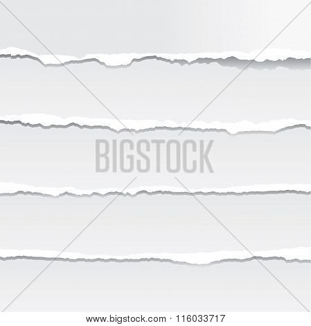 Torn Paper In Vector Format. Color Can Be Changed By One Click
