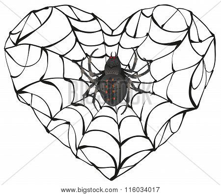 Spider wove web of heart shape. Heart symbol of love. Gothic love heart