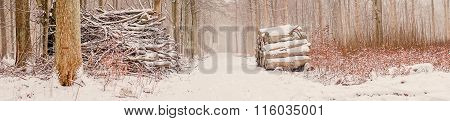 Wood Stack In The Forest At Wintertime
