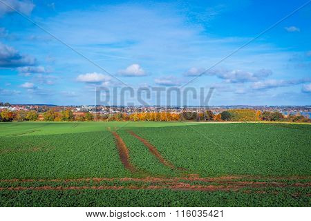 Tracks On A Field Near A City