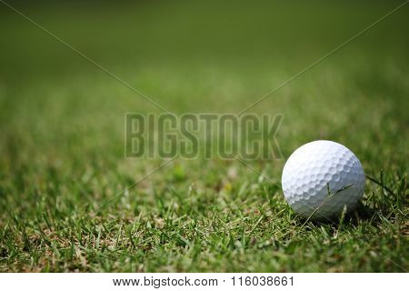 Macro of a golf ball in natural grass of golf course