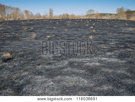 Black Field After The Fire