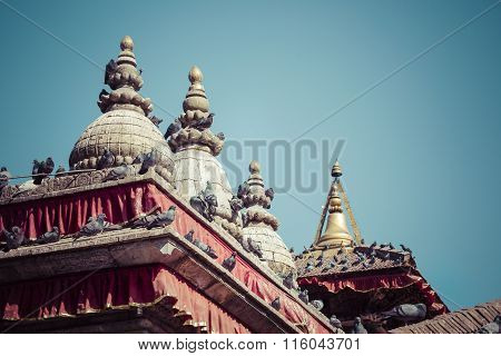 Tile Roofs With Many Birds On The Durbar Square In Khatmandu, Nepal