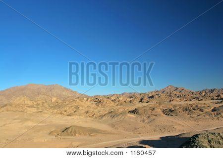 Desert In Sinai