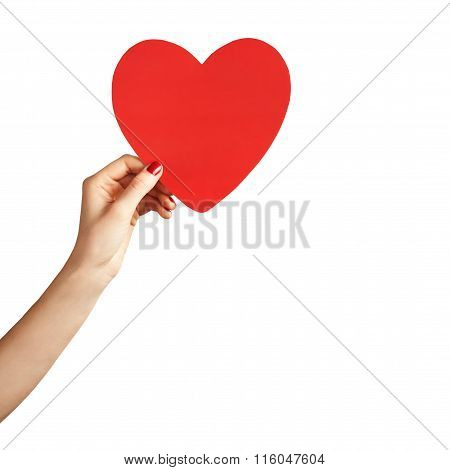 Heart In The Hand Isolated