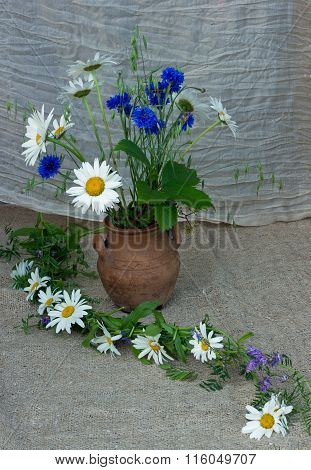 bouquet of camomiles and cornflowers garden clay ju