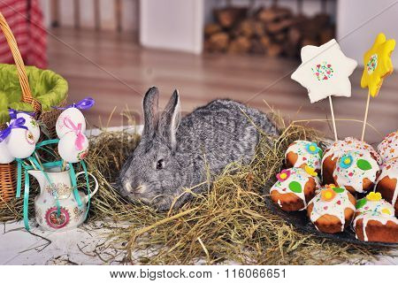 Fluffy Foxy Rabbit   With Easter Eggs