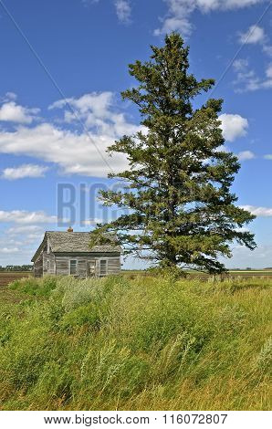 Old forlorn house on the prairie