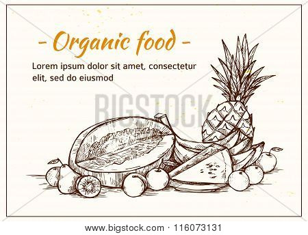 Hand Drawn Vector Illustration - Fruits. Supermarket. Grocery Store. Organic And Vegan Food.