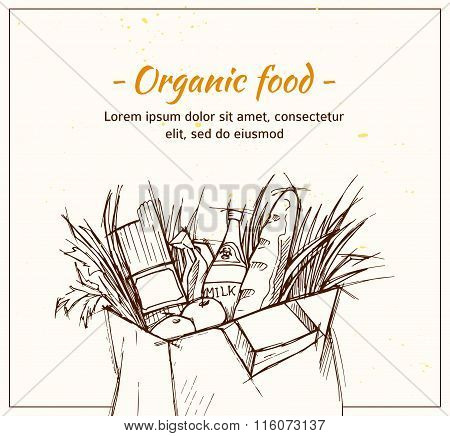 Hand Drawn Vector Illustration - Supermarket Shopping Bag With Organic Food. Grocery Store.