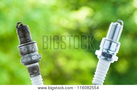 Auto Service. Two Spark Plugs As Spare Part Of Car.