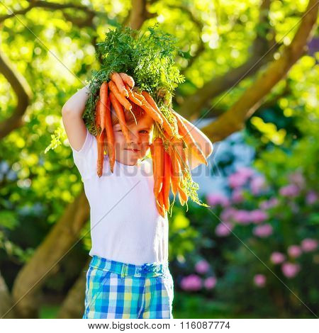 Funny little kid boy with carrots in domestic garden