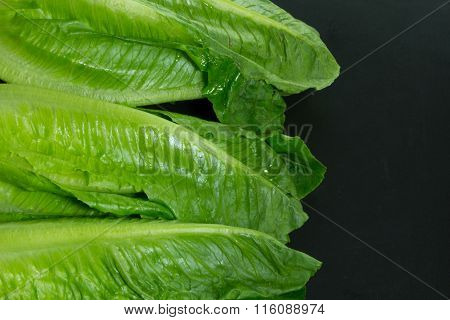 close up of Cos lettuce on black plate