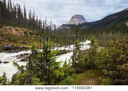 View of one of the stunning landscapes in Yoho National Park, British Colombia, Canada.
