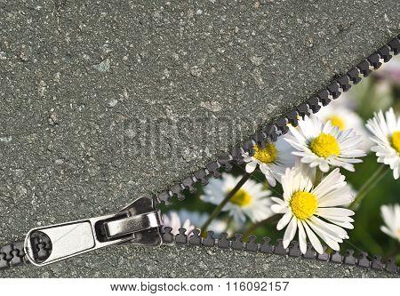 flower hidden behind a zip showing urban concept