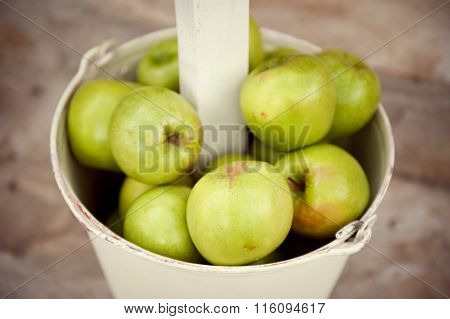 Lots of green apples in the pail