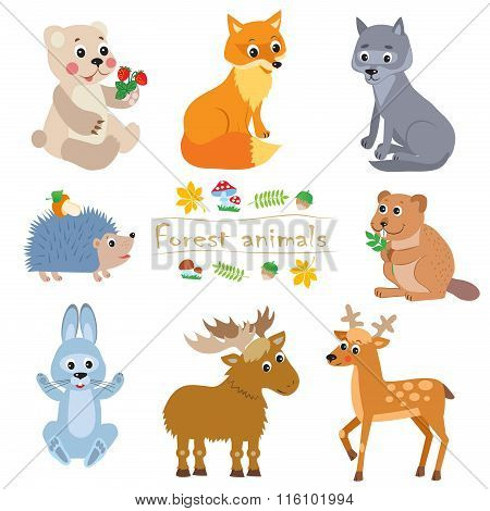 Cartoon Forest Animals Pack. Cute Animal Vector Set. Bear, Fox, Wolf, Hedgehog, Beaver, Moose, Hare, Deer. Forest Animals Toys. Forest Animals Party. Forest Animals Stickers. Forest Animals Baby.